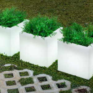 New Garden's Narciso 50 planters in use.
