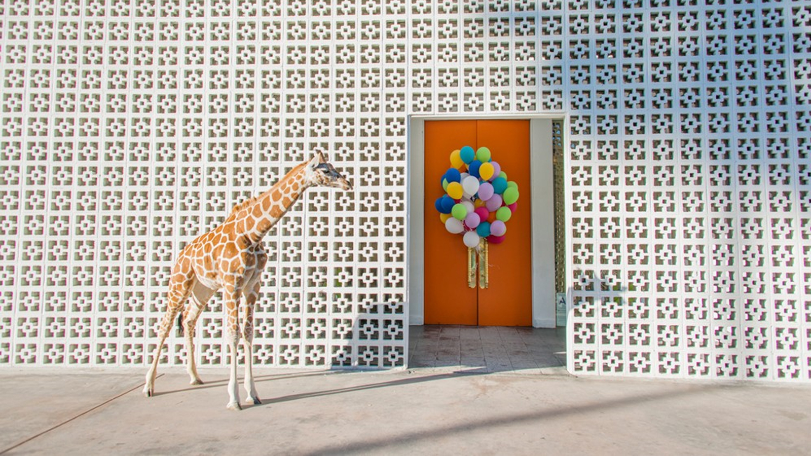 JONATHAN ADLER'S HEDONISTIC PALM SPRINGS DELIGHT